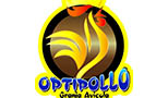 logo-optipollo